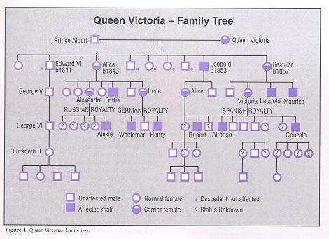 Queen Victoria | weight4us